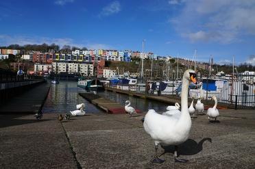 Bristol in Engeland: top bezienswaardigheden voor je citytrip