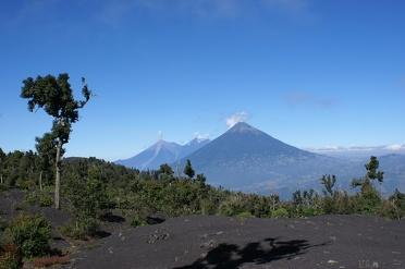 Beklim de Pacaya Vulkaan in Guatemala