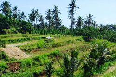 Hoogtepunten van Lombok