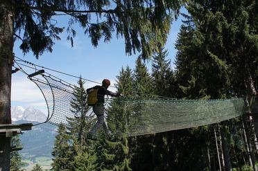 Hornpark de gaafste plek om te klimmen in het bos