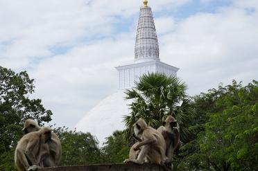Anuradhapura: tempels en andere historische bezienswaardigheden