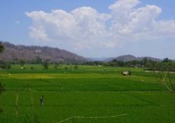 Hoogtepunten van West-Timor
